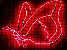 Rotes helles Neonzeichen Butterly sperrte ein und überraschte stockfotografie