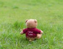 Rotes Hemd der braunen Abnutzung des TEDDYBÄREN Farbmit der Liebe, die auf Gras sitzt Stockbilder
