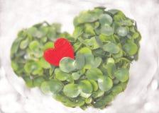 Rotes Herz auf dem grünen Baum stockfoto
