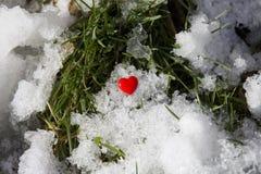 Rotes Herz auf einem Hintergrund des Schnees und des grünen Grases stockfotografie