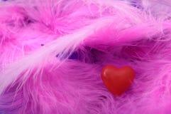Rotes Herz auf Federn Stockfotografie