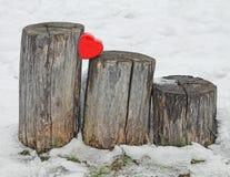 Rotes Herz auf Stämmen stockfotos