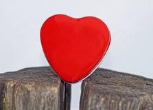 Rotes Herz auf weißem Hintergrund lizenzfreies stockfoto