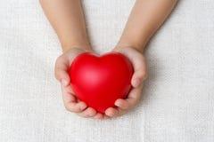 Rotes Herz in den Babypalmenhänden Lizenzfreie Stockfotos