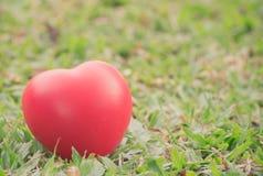 Rotes Herz in der Liebe des Valentinstags mit Hintergrund des grünen Grases Lizenzfreies Stockbild