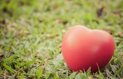 Rotes Herz in der Liebe des Valentinstags mit Hintergrund des grünen Grases Lizenzfreie Stockfotos