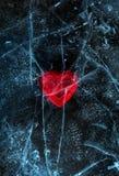Rotes Herz der Liebe eingefroren im Eis Valentinsgruß `s Tag Lizenzfreie Stockfotografie