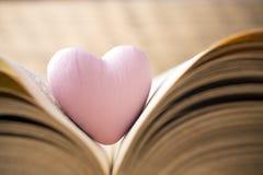 Rotes Herz des Buches Vektor eingestellt: Stilvolle 2014 Pferde Lizenzfreie Stockbilder