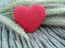 Rotes Herz und Gras auf hölzerner Beschaffenheit Lizenzfreie Stockbilder