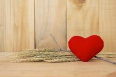 Rotes Herzvalentinsgrußkonzept Lizenzfreie Stockfotografie