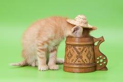 Rotes Kätzchen und geschnitztes Cup Stockfoto