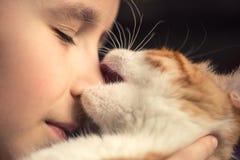 Rotes Kätzchenspiel und -bisse die Nase eines kleinen Jungen lizenzfreie stockfotografie