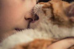 Rotes Kätzchenspiel und -bisse die Nase eines kleinen Jungen lizenzfreies stockfoto