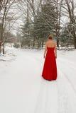 Rotes Kleid im Schnee Stockbilder