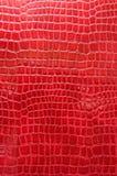 Rotes Krokodilleder Stockfoto