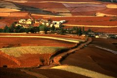 Rotes Land stockfotos
