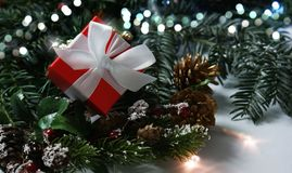 Rotes luxuriöses Weihnachtsgeschenk schmiegte sich in den Kieferniederlassungen an Stockfotografie