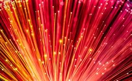 Rotes Netzkabel aus optischen Fasern lizenzfreie stockfotos