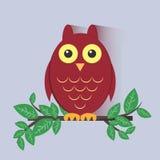Rotes Owl Sitting auf einer Niederlassung Lizenzfreie Stockbilder