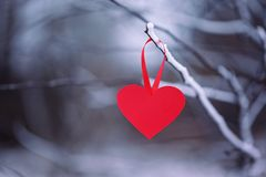 Rotes Papierherz auf dem Hängen an einer Winterniederlassung Konzept-Valentinsgrußtag Lizenzfreie Stockfotos