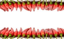 Rotes Paprikafeld Stockbilder