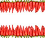 Rotes Paprikafeld Stockbild