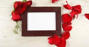 Rotes rosafarbenes Blumenblatt, das auf den Fotorahmen 4k fällt stock video footage