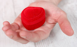 Rotes Samt-Schmuckkästchen platziert auf Palme Stockfotografie