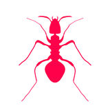 Rotes Schattenbild der Ameise, Logodesign Vektor Lizenzfreies Stockbild