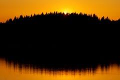Rotes Sonnenuntergang- und Baumschattenbild Lizenzfreies Stockbild