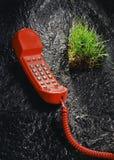 Rotes Telefon und Gras sode Stockfoto