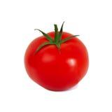 Rotes tomate auf weißem Hintergrund Lizenzfreies Stockfoto