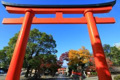 Rotes Torii im fujimi-inari in Japan lizenzfreie stockfotos