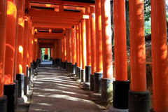 Rotes Torii in Japan: Fujimi Inari in Kyoto lizenzfreie stockfotos