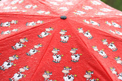 Rotes umbrella_1 Stockfotografie