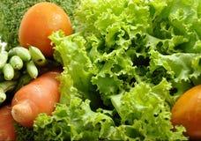 Rotes und grünes Gemüse Lizenzfreies Stockfoto