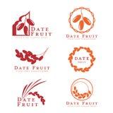 Rotes und orange Dattelpalmefruchtlogozeichen-Vektorbühnenbild Stockbilder