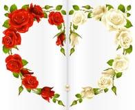 Rotes und weißes Rosen-Feld Stockfoto