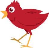 Rotes Vogel-Gehen Lizenzfreie Stockbilder