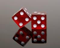 Rotes Würfel-Reflektieren Stockfotografie