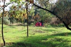 Rotes Zelt im Herbstwald stockfotos