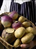 rotfrukter för korgkockholding Royaltyfri Bild