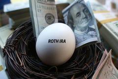 Roth IRA Nest Egg High Quality fotografering för bildbyråer