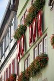 ROTHENBURG, GERMANY/EUROPE - 26 SETTEMBRE: Gerani rossi e Florida fotografia stock