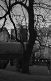 Rothesay Castle. Black and white study of the ruins of Rothesay castle showing tree silhouette in foreground and reflection of castle in moat, Isle of Bute stock photos