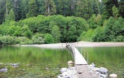 Rotholz-Waldfluß mit Brücke lizenzfreies stockfoto