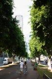 Rothschild blvd in Tel Aviv Royalty Free Stock Image