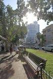 Rothshild boulevard i Tel Aviv, Israel Royaltyfria Foton