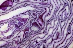 Rotkohl geschnitten in halbe Nahaufnahme Stockbild