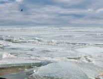 Roto el hielo en el mar en invierno foto de archivo libre de regalías
